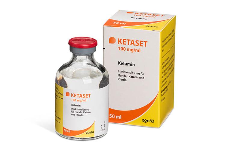 Thuốc mê dạng nước Ketaset III chính hãng