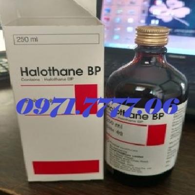 Thuốc Mê Halothane BP Cực Mạnh Hiệu Quả An Toàn 100%